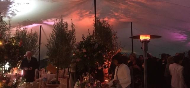 20 x 15 TM Wedding Lighting 2