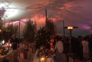 20 x 15 TM Wedding Lighting 2